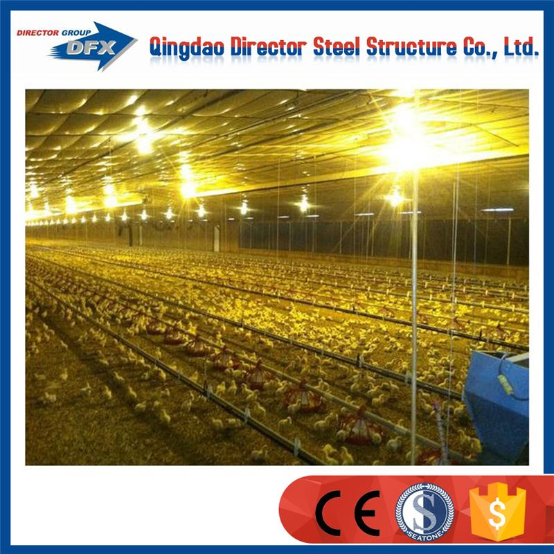 Prefabricated steel chicken shed sale