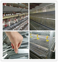 up-down sliding door pyramid chicken cage