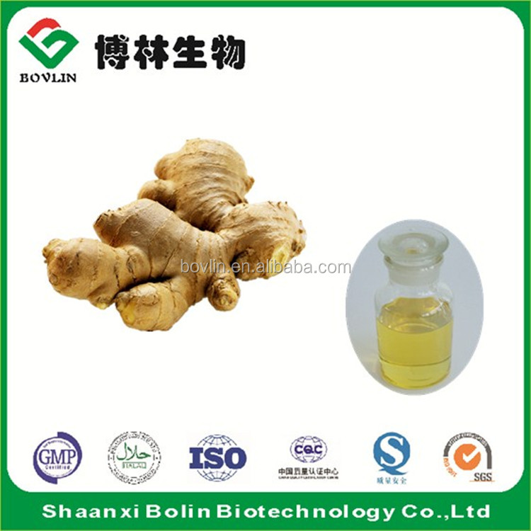 Wholesale 100% Pure Natural Ginger Essential Oil Extraction
