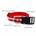 2017 Eco-friendly nylon webbing dog collars for dogs