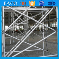 Professional weight for scaffold material roller scaffold Tianjin supplier