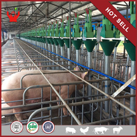 High Quality Factory Price Professional Design Automatic Pig Equipment For Pig