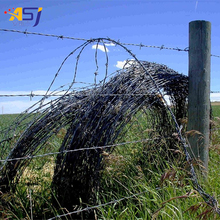 China supplier Security fencing razor barbed wire