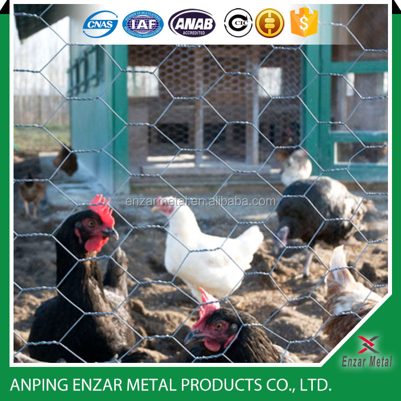 Poultry Fencing/Chicken Wire/Poultry Netting