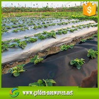 Water Permeable Agriculture Non woven Fabric/pp spunbond nonwoven fabric/agriculture ground cover for plant