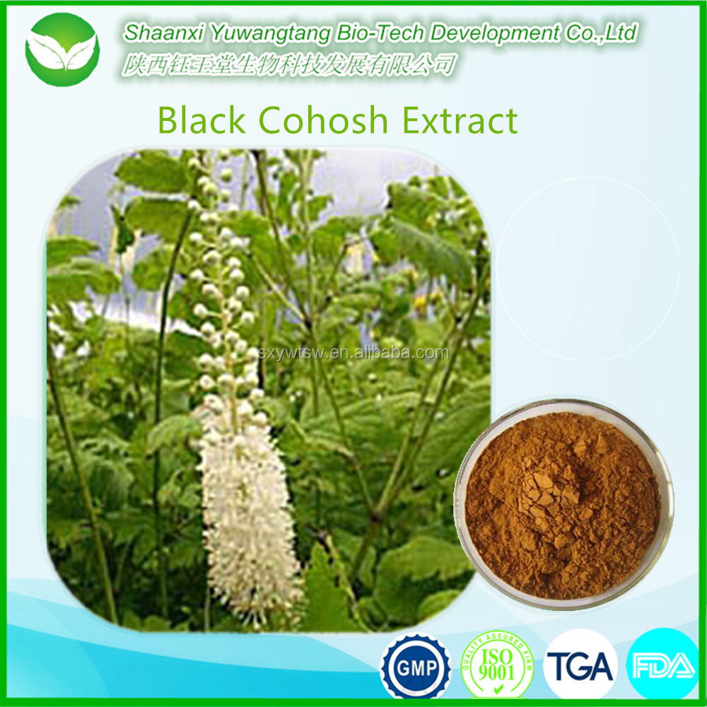 Top quality powdered black cohosh root extract 2.5%,8% triterpenoid saponin
