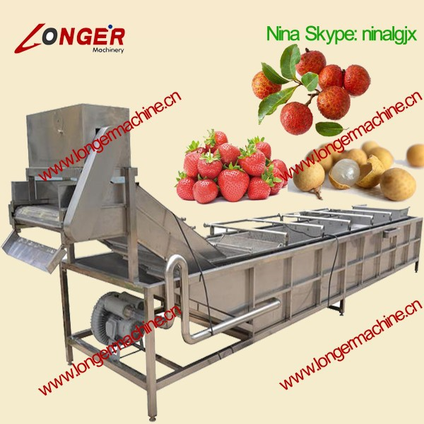 Air Bubble Cleaning Machine|Vegetable Washing and Disinfecting Machine