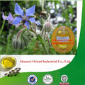 Natural & pure borage oil bulk with low price, borage seed oil