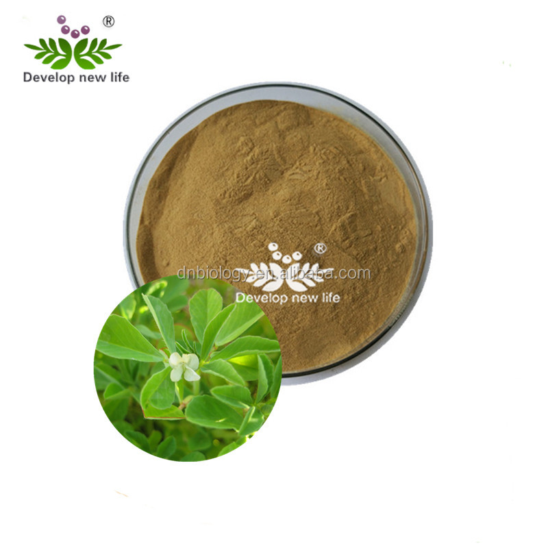 High quantity Fenugreek extract/Fenugreek extract powder/fenugreek seed oil