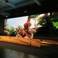 ISE outdoor p6 full color screen full color good dquality animation video wall