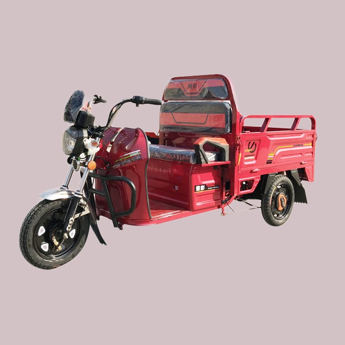60V 800W Heavy Load Big Powerful China Power-Assisted Trike Electric Tricycle Adults 3 Wheels e Pedelecs for Cargo