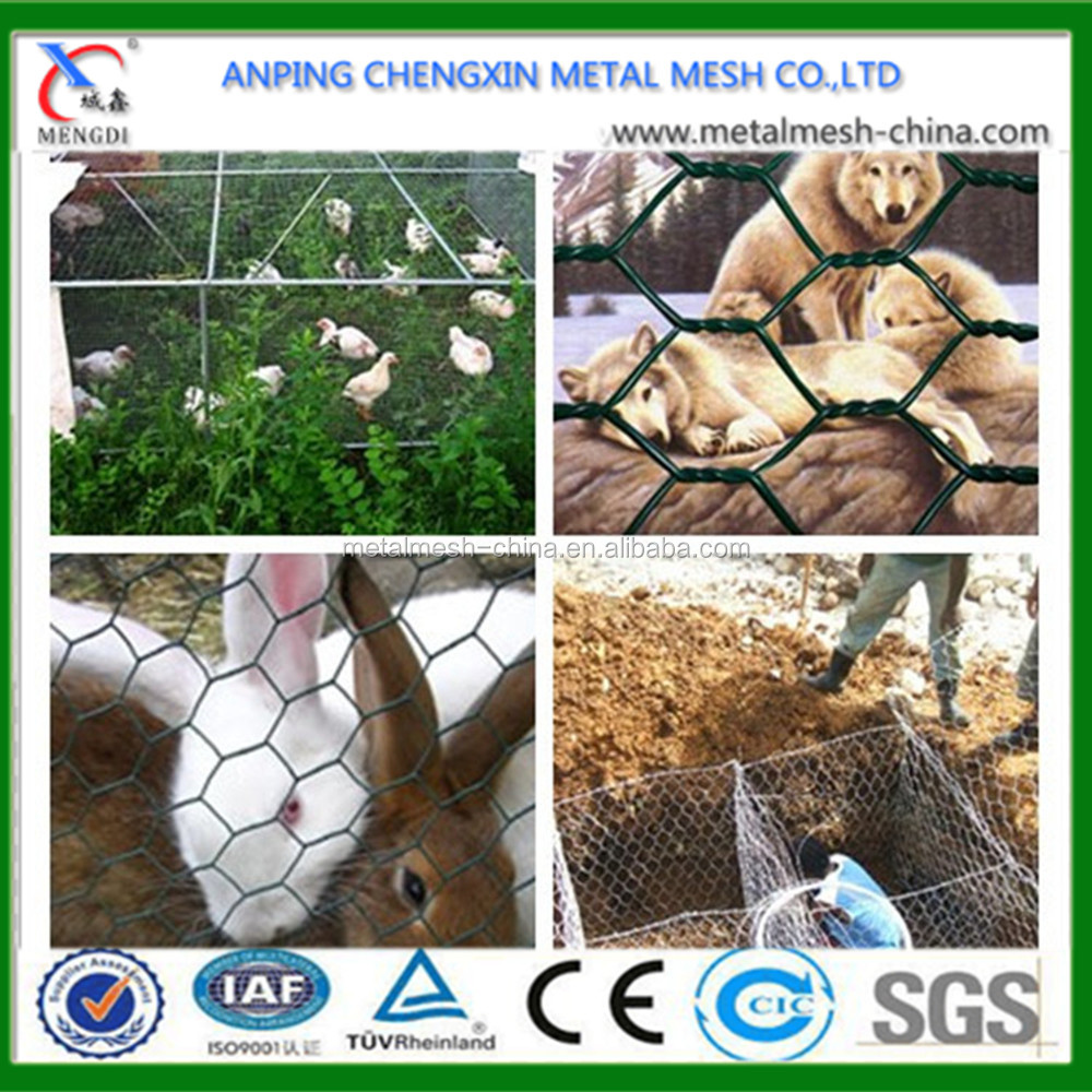 China Cheap Rolled Wire Galvanized Steel Poultry Netting