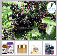 Factory Supply 100% High Quality Plant Extract Natural Elderberry
