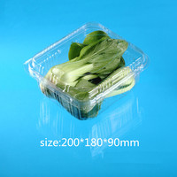 PET plastic transparent FRUIT AND VEGETABLE packing box with lid