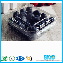 blueberry container Disposable Plastic Fruit Tray