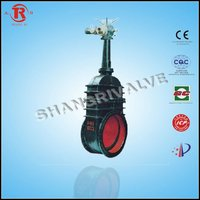 Electric Rising Stem Flange Gate Valve