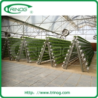 Herb A Frame Stand Hydroponics For