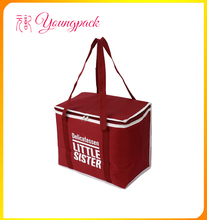Insulated High Quality 600D Polyester Lunch Cooler Bag