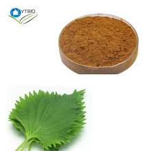 Factory Supply Best Sale Mulberry Leaf Extract Powder 1-Deoxynojirimycin
