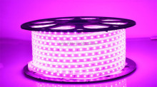 Low voltage DC12V/24V Lighting Full Kit 600 Units 60Leds/M waterproof flexible 3528 led strip