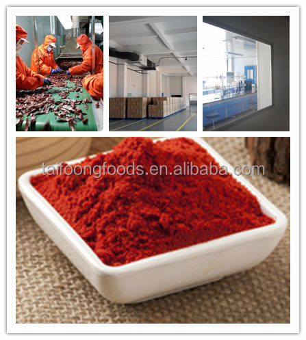 different Pungency and quality china popular red hot Steam Sterilized milled pepper chilli hot paprika