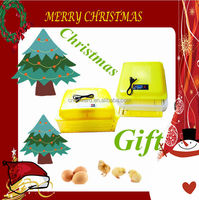 Wholesale Toys for christmas 2014/latest gifts for girls/naughty christmas giftss/eggs incubator