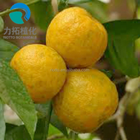 China Factory Supply High Quality Methyl Synephrine Powder/ Citrus Aurantium Extract Synephrine/ Citrus Aurantium Extract Powder