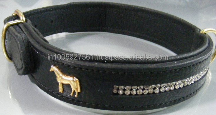 horse tag dog collar