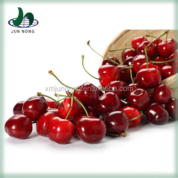 Hot selling canned sweet cherry