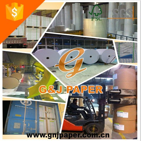 C2S Glossy Chrome Coated Paper in Sheet and Roll