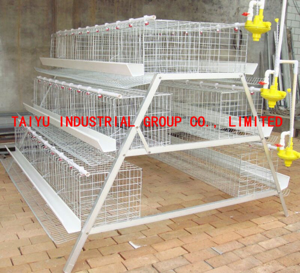 guangzhou poultry farming equipment factory for chicken