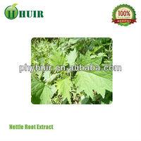 Buy dried leaf medicine herbs nettle leaf tea in China on Alibaba.com