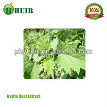 Best Selling Natural Nettle Leaf Tea