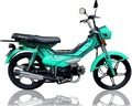 Chinese 50cc 70cc 100cc cheap gas mini pocket bikes for sale ZF48Q