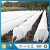 /product-detail/customized-agriculture-farming-fabric-high-quality-pp-non-woven-cloth-weed-control-fabric-homebase-60458532592.html