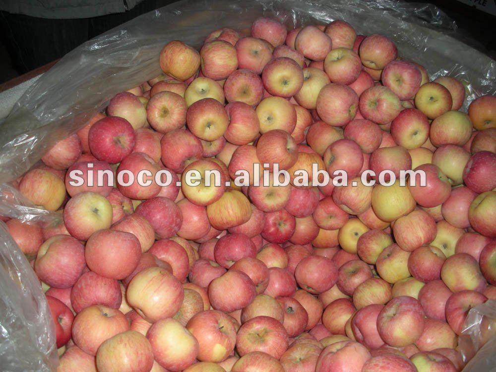 red star apple fresh for sale