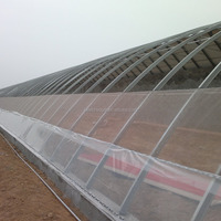 The Cheapest Tunnel Greenhouse For Sale