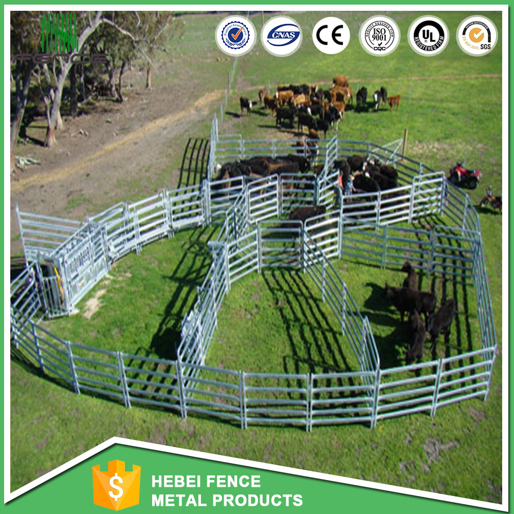 Corral fence panel with round pipe in china Used for sheep / Goat
