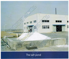 Large capacity whole production line salt refinery plant of China