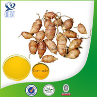 New Arrival Natural turmeric extract ginger extract