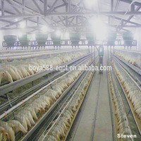 Metal quail breeding cages for sale