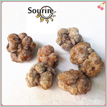 China factory frozen truffle of white