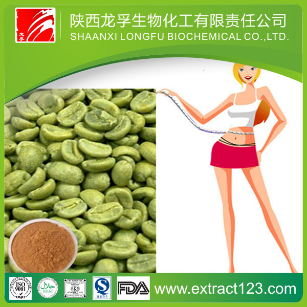 Best selling green coffe bean extract for slimming product
