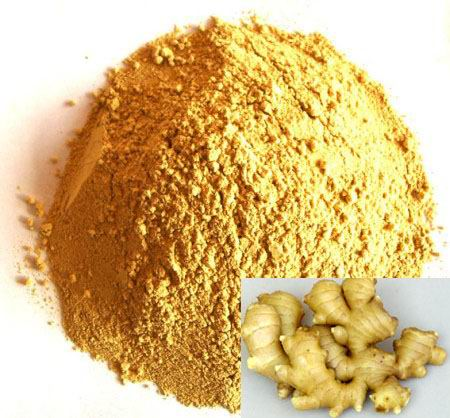 Free samples Ginger extract 10% 15% 20% Gingerols with best price and fast delivery.