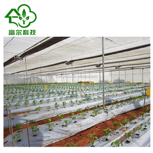 Arch design plastic film double inflated greenhouse