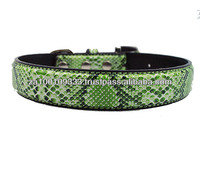 Faux Snake Skin African dog Collar - low moq