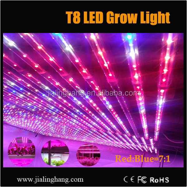 Plotted Plants Use T8 Led Grow Light 7 Red 1 Blue Smd Led Light ...
