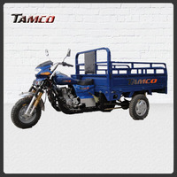 TAMCO T200ZH-FB tricycle sale/tricycle smart trike/tricycle taxi