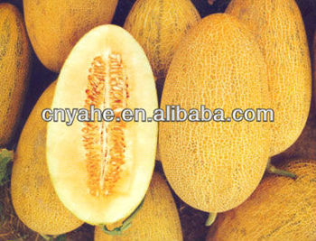 Cantaloupe Flavour for sweet food