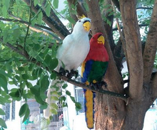 Theme Park Decoration Animated Animatronic Parrot for Sale